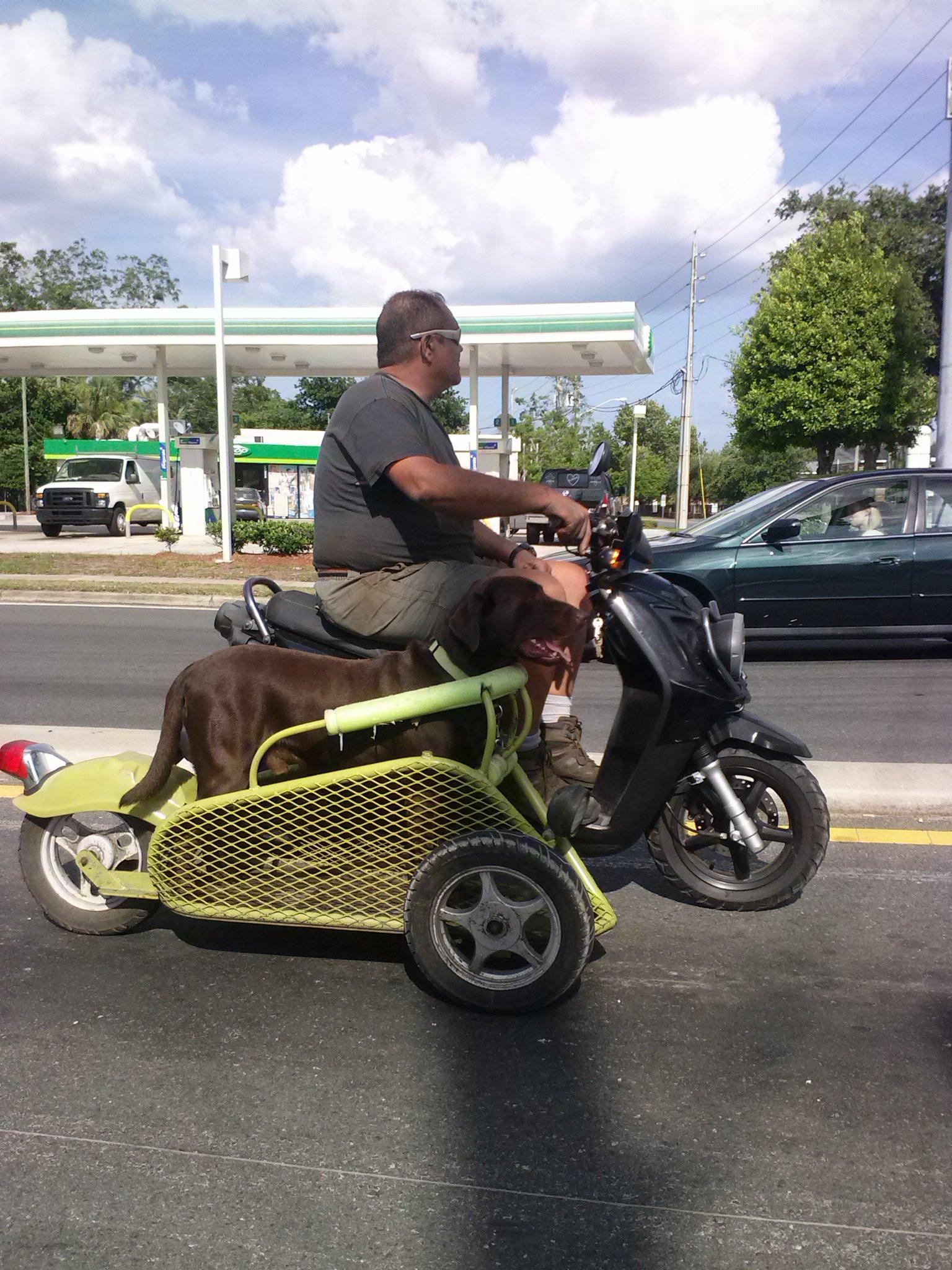 Scooter cu atas