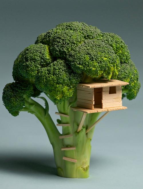 Casa din broccoli