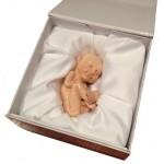Machetă 3D a copilului nenăscut = 600 USD