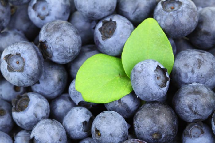 Fructele de afin au in compozitie echivalentul natural al insulinei
