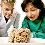 Genele influențează memoria și simțul orientării