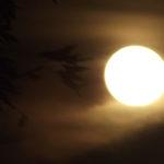 Ne afectează nopțile cu lună plină somnul sau dispoziția?