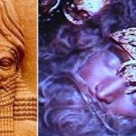 Pe YouTube se găsește un film misterios cu un sicriu Anunnaki vechi 12.000 ani!