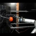 Animalele care au brațul amputat, pot controla unul robotizat cu ajutorul unor electrozi