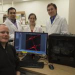 Noi metode de a crea țesuturi și organe 3D