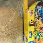 Un copil a găsit metamfetamina în valoare de 40.000$ într-o cutie LEGO