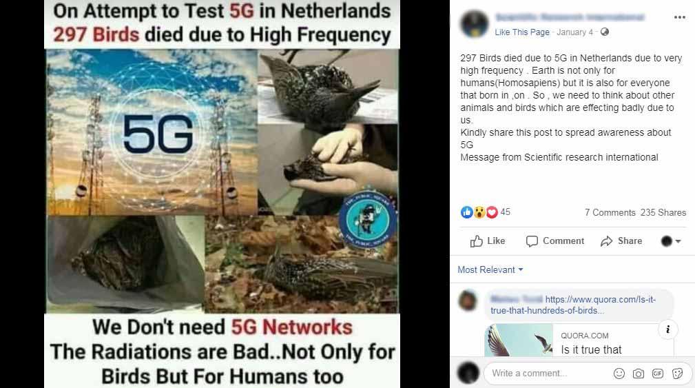 Nu, 297 de păsări nu au murit în Olanda din cauza unui test 5G