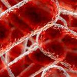 Infecțiile care consumă carne umană pot genera tulpini bacteriene care se împerechează