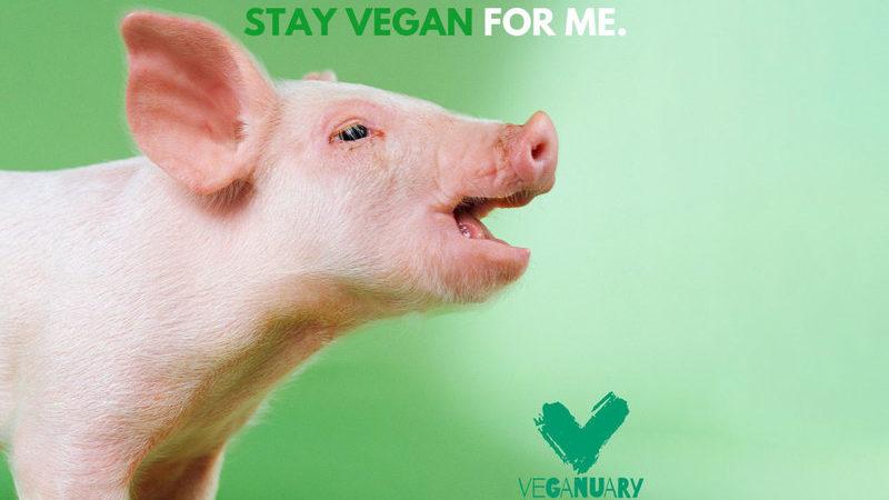 VEGANUARY – campania care te îndeamnă să devii vegan ajunge și în US