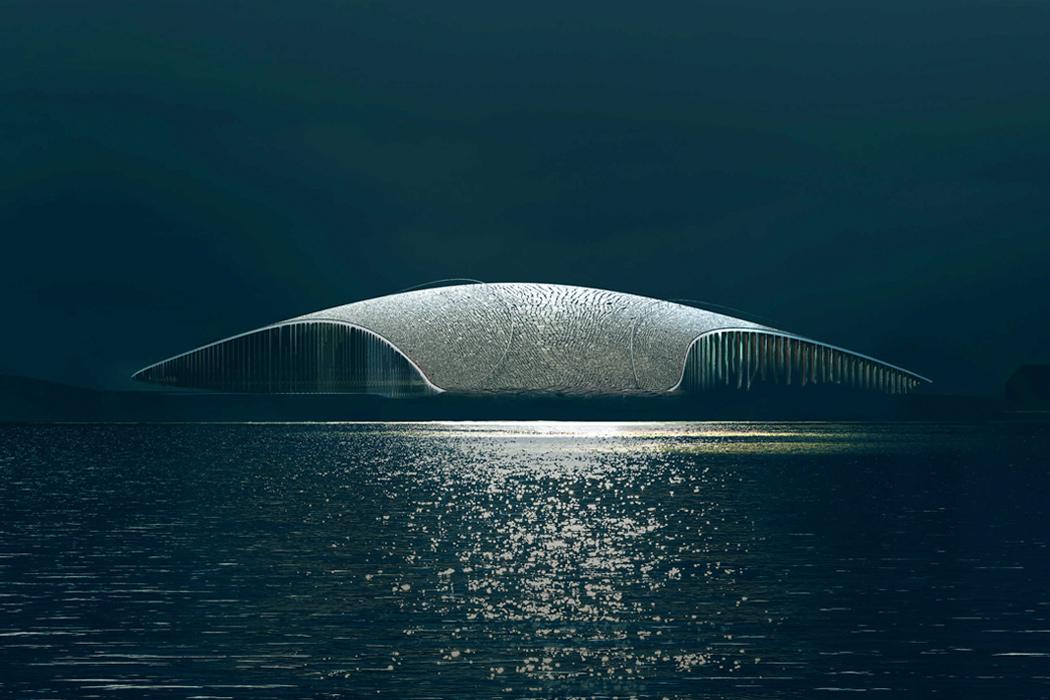Structura inspirată după o balenă a fost concepută pentru a urmări creaturi maiestuoase!