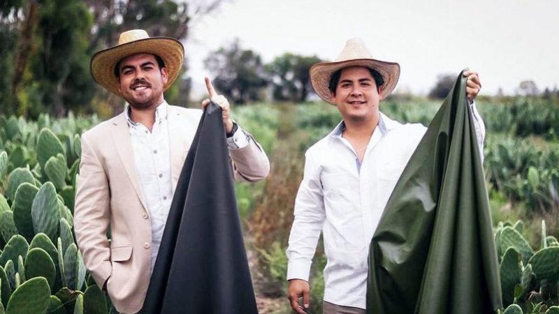 Pielea din cactus mexicană a fost nominalizată la premiul ECO GERMAN